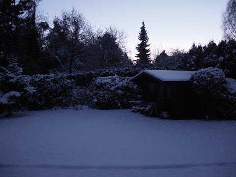 Σήμερα, πρωί, πριν το φως του ήλιου. Χιόνι, στα προάστια των Βρυξελλών -στον πίσω κήπο