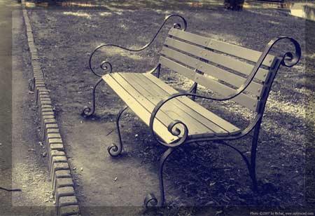 photo©Michel, optimiced.com