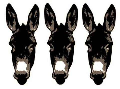 donkeyHead