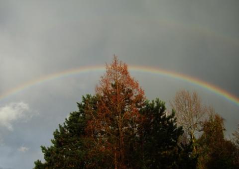 rainbow2-18-11-16